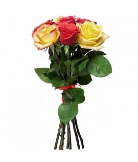 Փունջ 445 (Քենիական վարդեր 7հատ, 50սմ)
