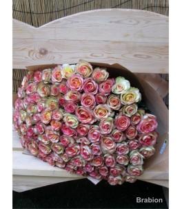Փունջ 41 (101 վարդ )
