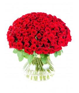 փունջ 66 (101 վարդ)